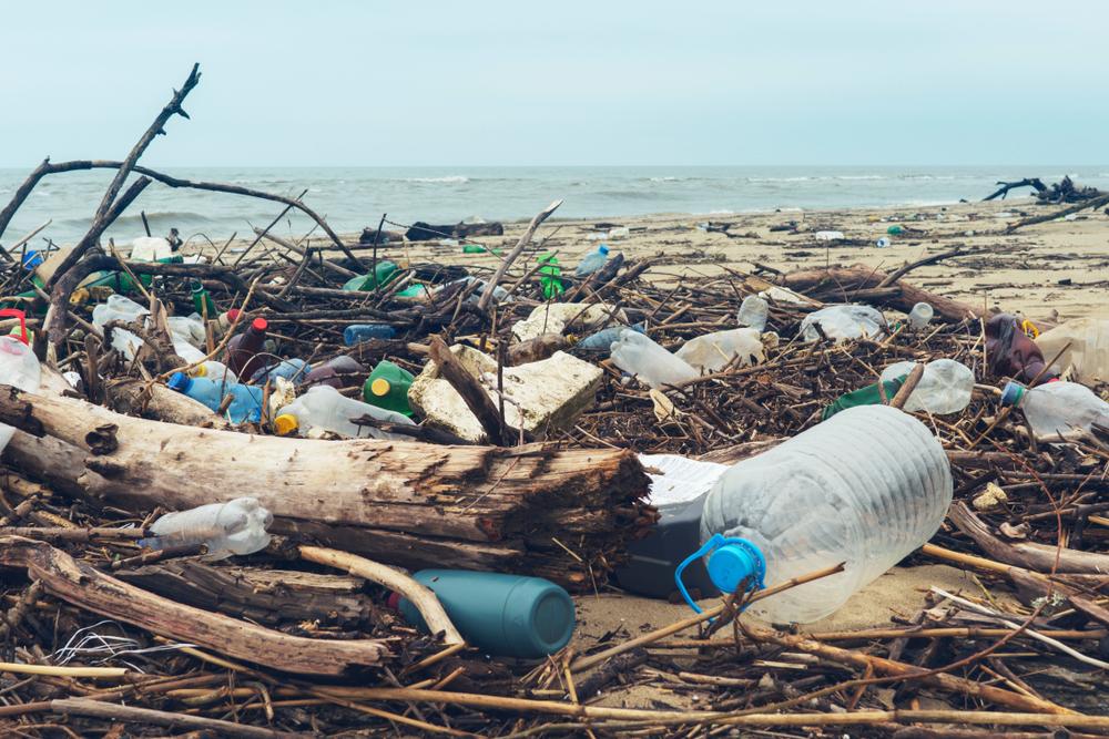pollution des océans bouteille en plastique